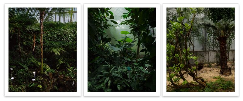 BotanicalGardens_web